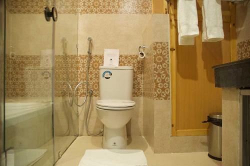 deluxe-toilet1