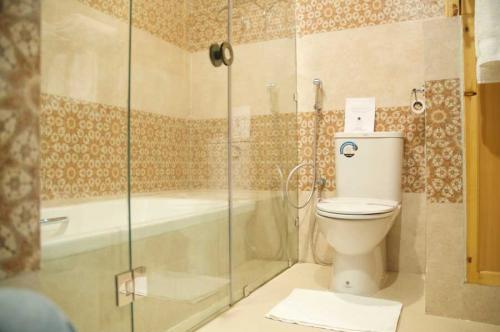 deluxe-toilet2