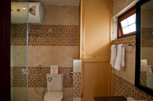 standard-toilet2